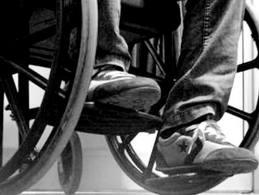 Alunni Disabilità