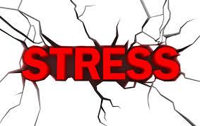 stress - nicolini